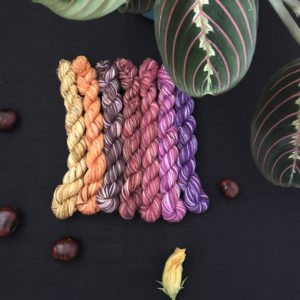 set of 7 autumnal mini skeins on a black background surrounded by conkers, with a maranta plant at the top of the image. The yarns are a mix of yellows, pinks, reds, purples, browns and oranges.