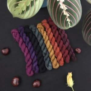 a rich, deep set of 8 mini skeins in autumnal semi solids. the colours shown are plum, blackberry, purple, navy, dark green, mustard, saffron, deep red and burgundy.